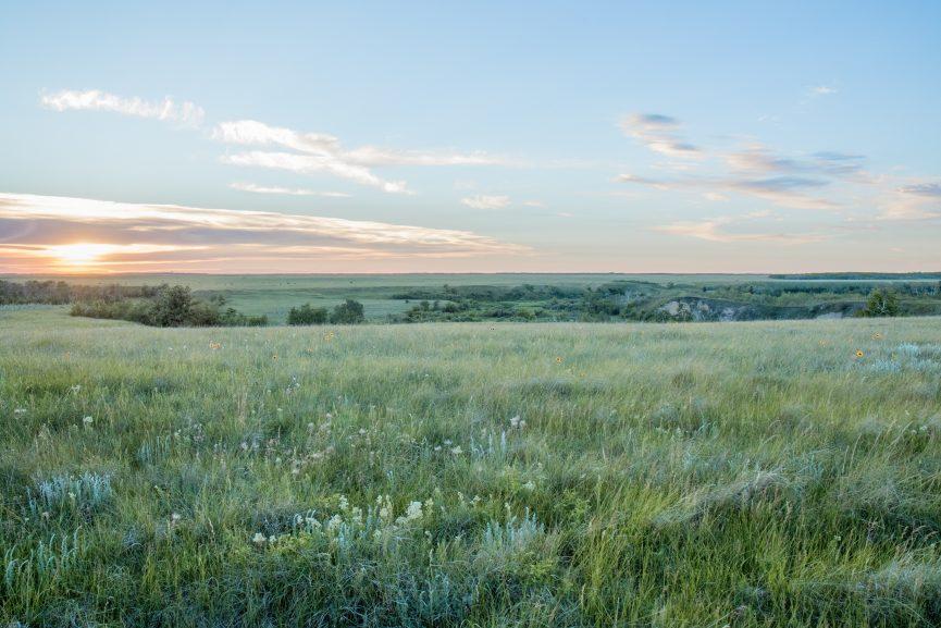 Prairie landscape Meuckon, Cam